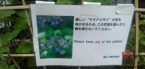 No te subas al jardinero