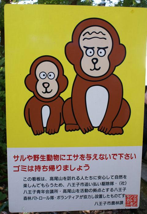 Monos en Takao san