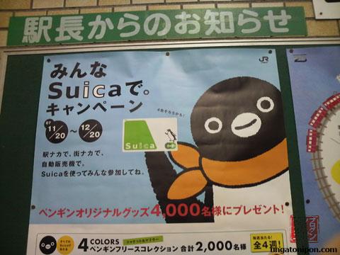 Suica 1
