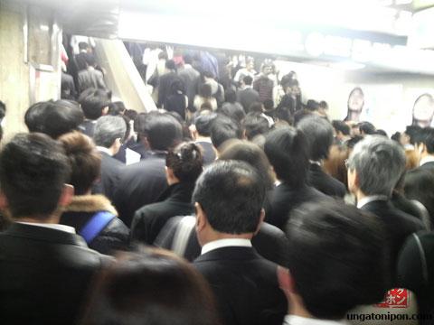 Marabunta en Shibuya