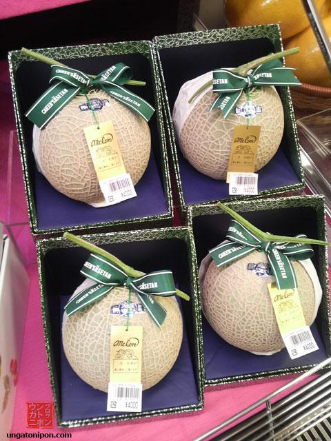 Melones nipones