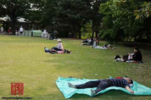Parque de Shinjuku Gyouen