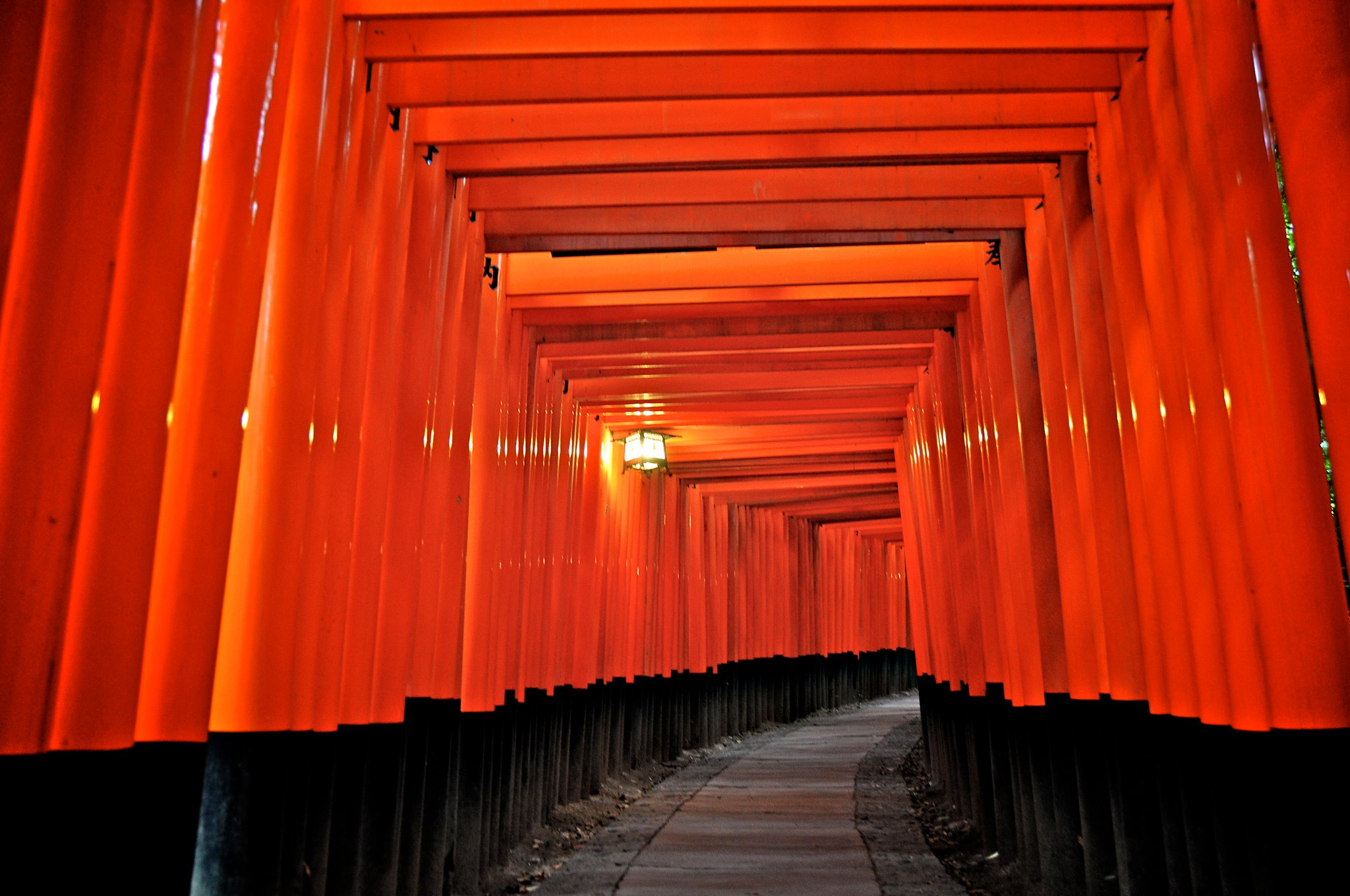 Fushimi Inari Taisha, fotografiada por mi mismo