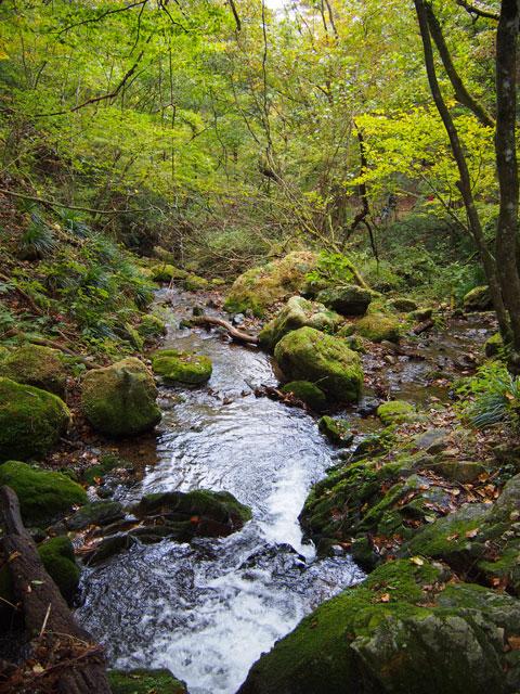 Caminata por el riachuelo del Monte Mitake
