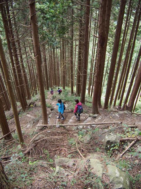 Caminata por el Monte Mitake