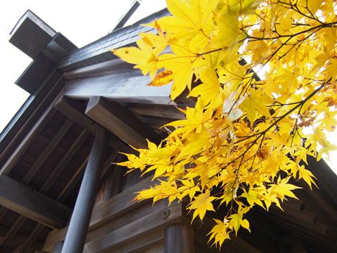 Kouyou en el Templo del Monte Mitake