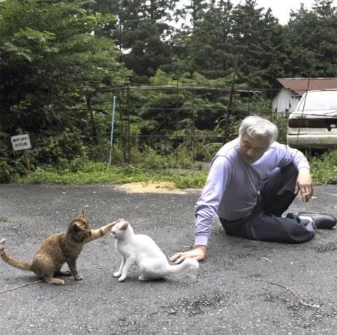 Macchan con Shiro y Sabi