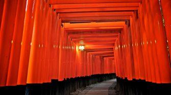 Toriis de Fushimi Inari
