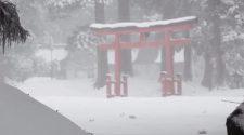 Monjes de Yamagata