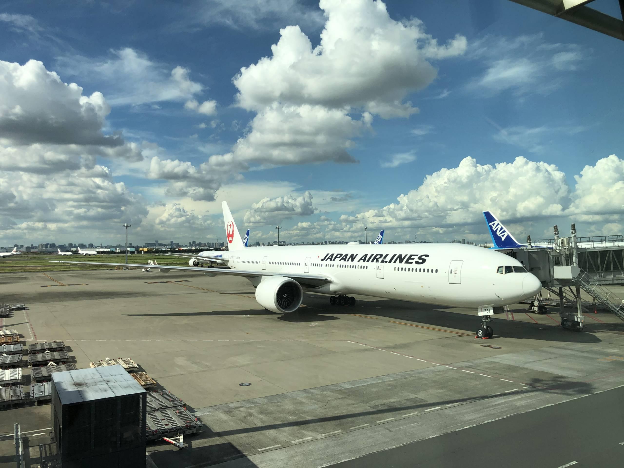 B787 de JAL que nos trajo a Tokio