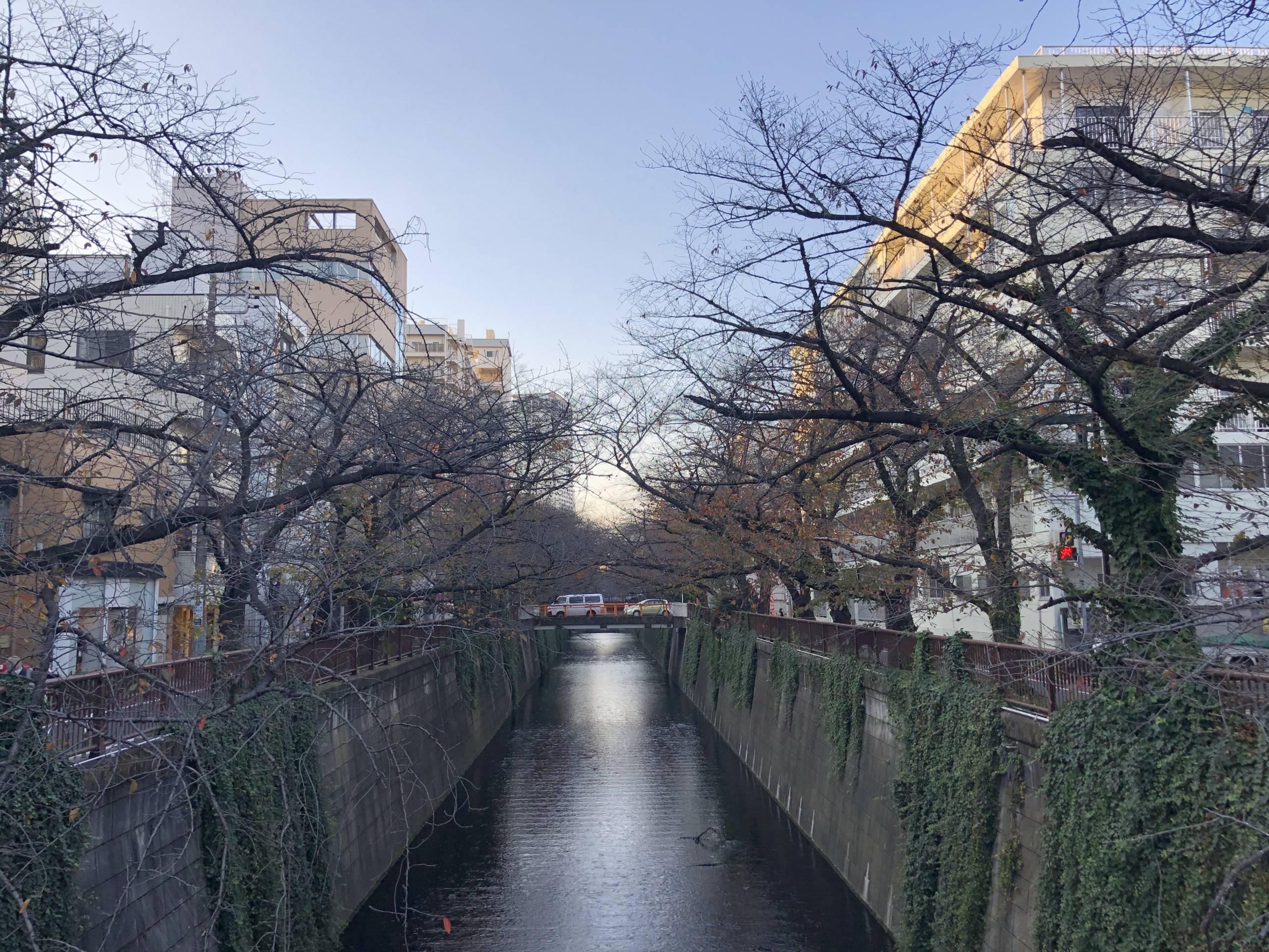 Río Meguro