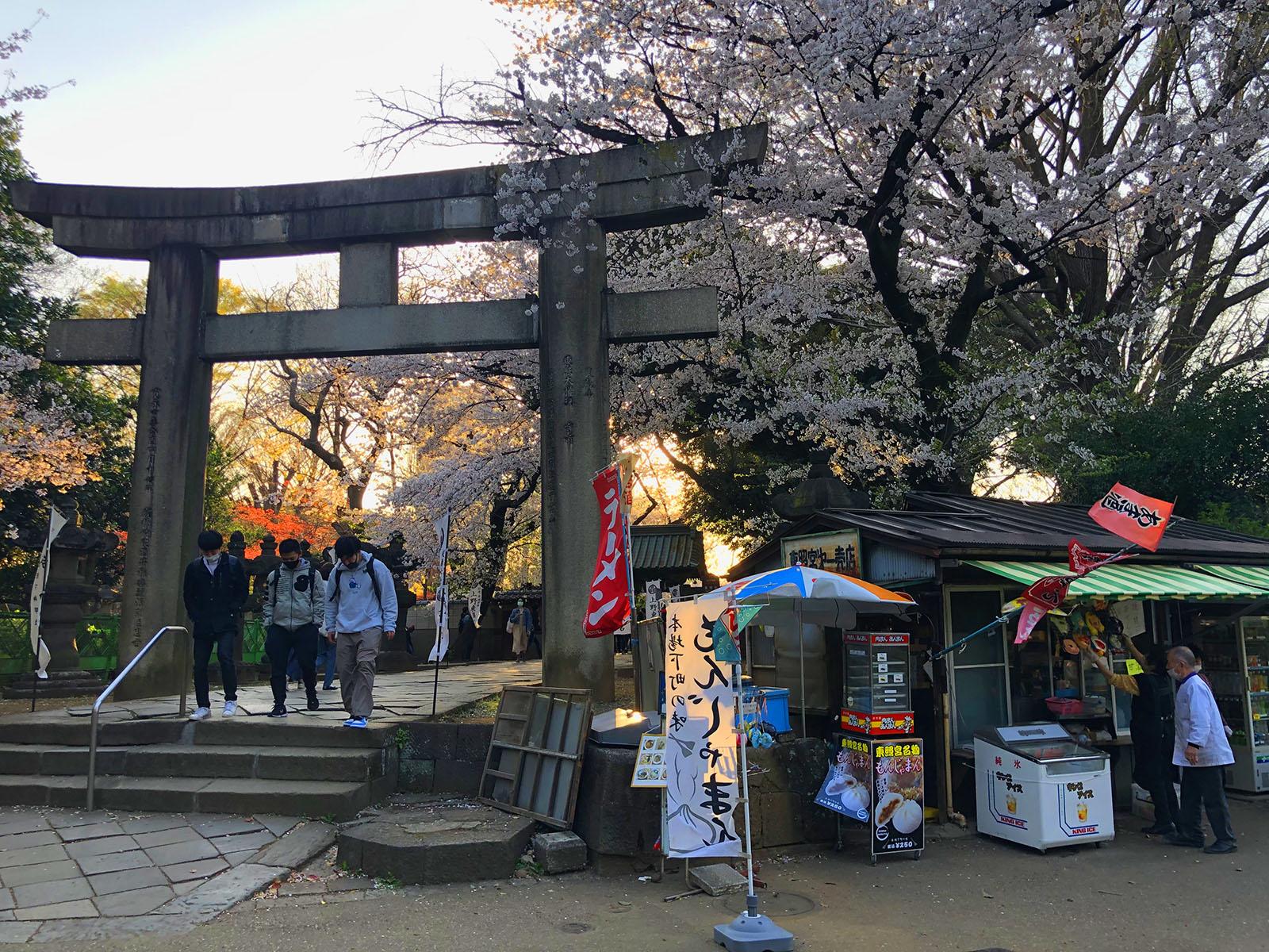Torii de entrada al santuario de Toshogu, en el parque de Ueno de Tokio